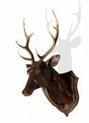 """Tête de cerf"", sculpture en bois, JP Douziech"