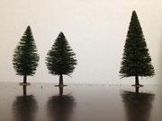 庭木の配置2