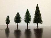 庭木の配置1