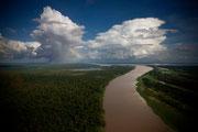Amazzonia (Autore: Emiliano Mancuso)