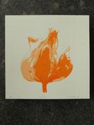 Tulpe orange 20x20cm, Auflage 5Stück