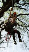 Rettungsübung Bad Segeberg / Lehranstalt für Forstwirtschaft