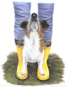 """Molly"" - Jack Russel Portrait in Pastellkreide, 30 cm x 24 cm"