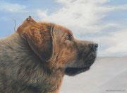 """""""Sammy und Koboldchen"""" - Hund und Feldmaus, Pastellkreide, 40 cm x 30 cm"""