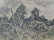 2293/ Bleistift, ~1965,  Peter Schadwinkel unsign. (Zertifikat), 25x18cm, EUR 20,-