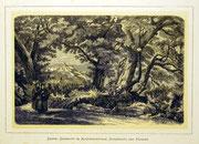 1169/ Druck aus Kunstbuch, ~1900, Castel Gandolfo im Albanergebirge, C.Zimmermann X.A., Blatt 20x26cm, Stockflecken, EUR 15,-