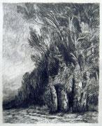 2294/ Bleistift, ~1976,  sign. P.Sch., 21x26cm, EUR 20,-