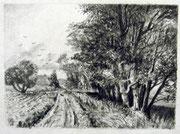 2482/ Bleistift, ~1984, monogr. P.Sch., 35x27cm, EUR 40,-
