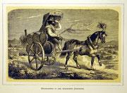 1152/  Druck aus Kunstbuch, ~1900, Weinkarren, C.Zimmermann X.A., Blatt 20x26cm, EUR 15,-