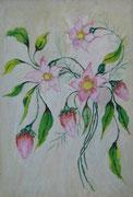 2468/ Blumen, 1961, P.Schadwinkel unsigniert (Zertifikat), 24x36cm, 40,-