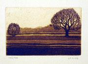 1138/ Radierung, ~1975, unleserliche Signatur, Blatt 20x27cm, EUR 15,-