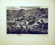 1204/ Radierung ~1930, Lüneburger Heide, sign. in der Platte Welins, 24x32cm, EUR 20,-