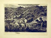 1212/ Radierung ~1930, Lüneburger Heide, sign. in der Platte Welins, 24x32cm, EUR 20,-