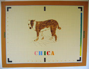 2384/ Siebdruck, 1973, Chica, sign. Dieter Glasmacher, 76x56cm, Wasserflecken links oben, EUR 80,-