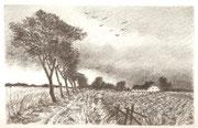 2269/ Bleistift, ~1976, Peter Schadwinkel unsign. (Zertifikat), Motiv 16x10cm, EUR 15,-