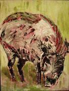 Die Wildsau, Acryl auf Papier, 50 x 64 cm, Susanna Schürch 2012, gerahmt, Fr.700.-