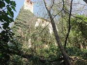 ruine des schlosses gleichenberg im frühling 2011