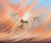 Traum vom Fliegen, 50x60, Öl auf Malplatte
