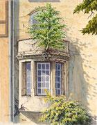 Die Balkonbirke, 40x30, Aquarell auf Papier