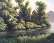Uferwald, 40x50, Acryl auf Leinwandplatte