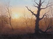 Morgensonne, 30x40, Aquarell auf Papier
