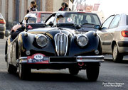 JAGUAR XK/40 - 1954