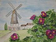 Windmühle mit Heckenrosen