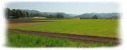 佐久市の牧場