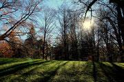 Park Schloss Ambras 2012