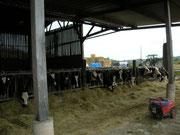 La ferme et la fromagerie Durand