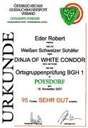 18.11.2007 BGH1  95Pkt  SG