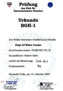 14.10.2007 BGH1  94Pkt  SG