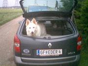 ich darf bei Manfred immer im großen Auto sitzen