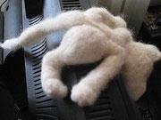 Компьютерная кошка Клава.Полное имя Клавиатура. Собственность автора