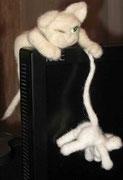 Компьютерный кот Сидер. Полное имя Сидером.Собственность автора