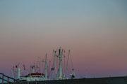 Cap San Diego - was lugt da noch hervor?