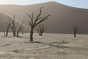 "Uta Prautzsch - ""Dead Valley"""