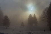 Hochschwarzwald im Winter