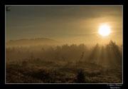 © Objectif Loutre - Stéphane Raimond -  levé du jour sur le plateau de Millevaches