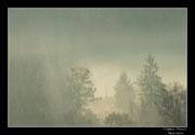 © Objectif Loutre - Stéphane Raimond - brume