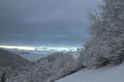 La prima perturbazione del 2014 ha portato un po di neve sulle nostre montagne, neve da 400mslm però lo spettaccolo è da 600mslm, oggi pomeriggio sono salito fino a circa 1200mslm dove il manto nevoso era di circa 18cm.