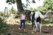 Travaille sur l'autonomie de l'enfant avec son poney