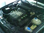 Der 2,6 V6 fährt mit Autogas