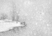 Tempête de neige   Photo:  J Houriez