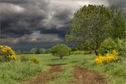 Avant la pluie