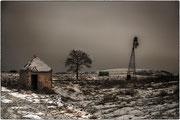 Photo:D Parigot