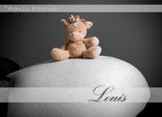 Schwangerschaftsshooting Schwangerschaftsfotos Babybauch Franzis Fotostudio Walle