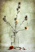 Bouquet piquant