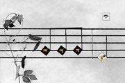 """Déconcertante symphonie au quatre """"pom"""""""