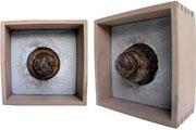 Obus, Concrete Art 1, 2011, 20x20cm